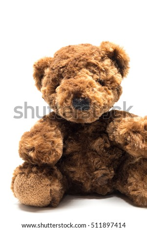 Brown Teddy bear doll, isolated on white background.