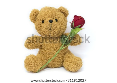 brown teddy bear holding plastic rose isolated on white background, valentine background