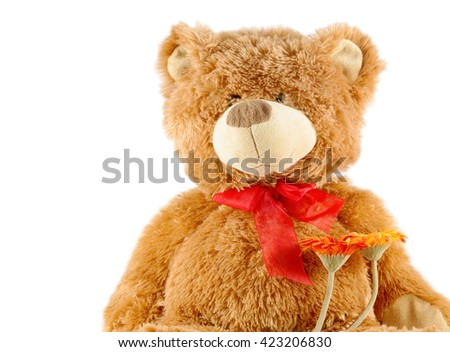 brown teddy bear isolated on white / toy teddy bear isolated on white /  stuffed toy bear - stock photo