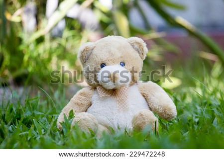 Brown teddy bear with scarf sitting on the grass - stock photo