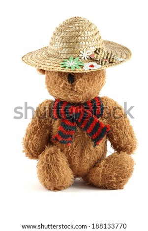 Brown teddy bear with summer hat - stock photo
