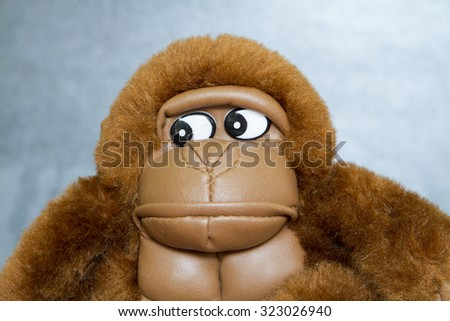 brown toy gorilla close-up look at the face of a black background. symbol of New Year 2016 - stock photo