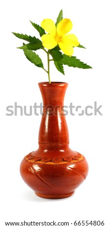 Brown vase and yellow flower isolated on white - stock photo