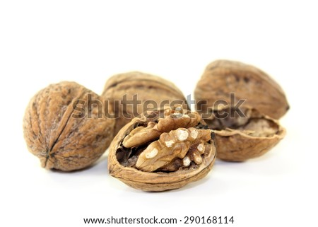 brown Walnuts on a bright background - stock photo