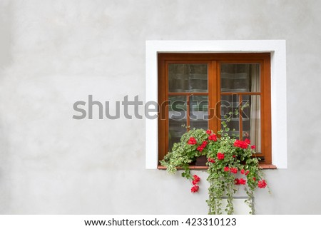 Brown window with a red flower in a pot on a gray wall