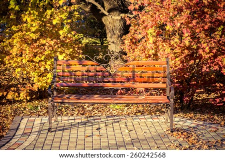 Brown wooden Bench in the autumn park - stock photo