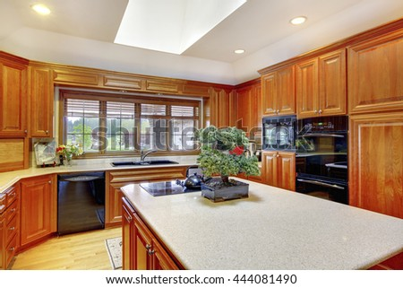 Brown wooden kitchen interior with black built-in appliances, kitchen island with little bonsai tree in a pot. Also white ceiling and skylight.