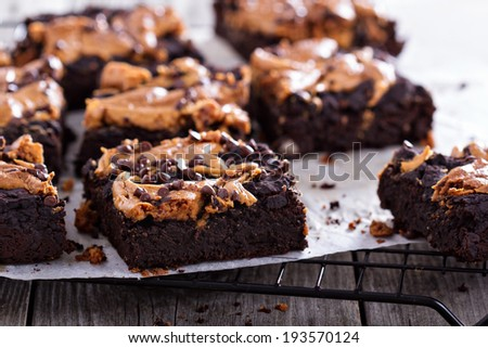 Brownies with peanut butter and chocolate drops - stock photo