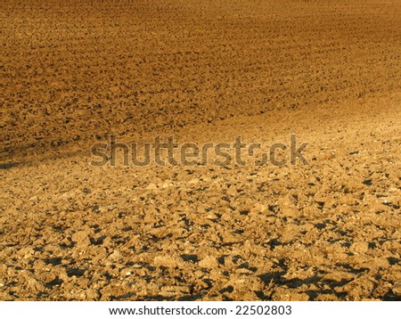 Brownish fields after tillage