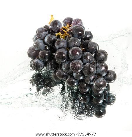 brunch of grapes in water splash