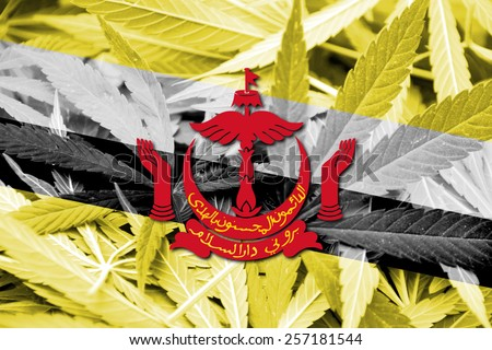 Brunei Flag on cannabis background. Drug policy. Legalization of marijuana