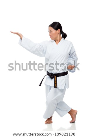 Brunette practicing karate - stock photo