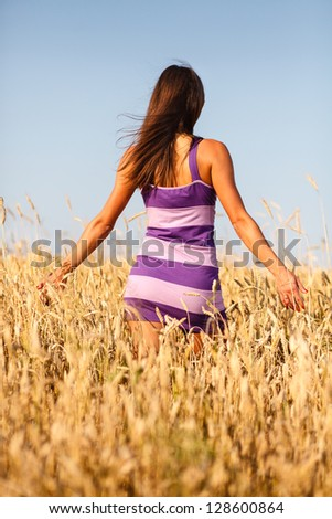 Brunette sexy girl in short dress at wheat field. - stock photo