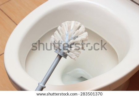 Brush for cleaning and toilet bowl in background, concept for house cleaning and household duties
