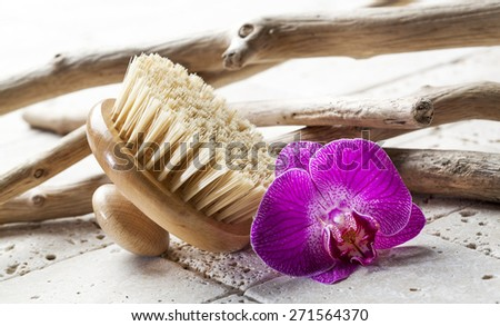 brush for purity at the beauty salon - stock photo