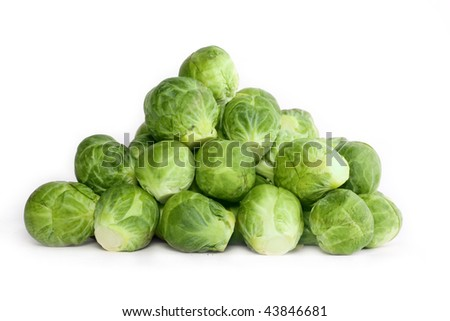 Brussel's sprout over white - stock photo