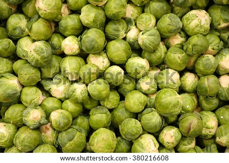 brussels sprout - stock photo