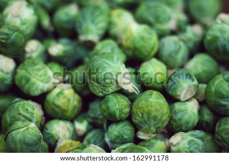 Brussels sprouts - stock photo
