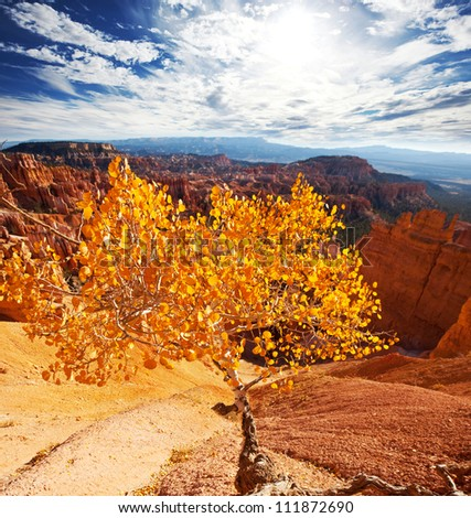 Bryce canyon in fall season - stock photo
