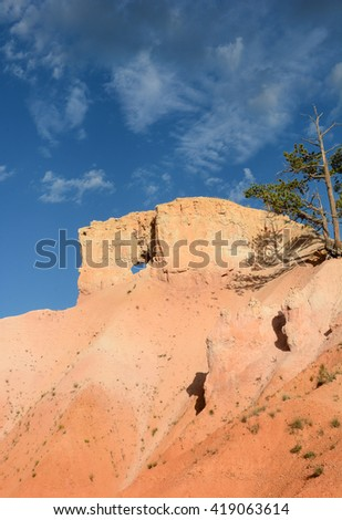 Bryce Canyon scenic in vertical format with blue cloudy sky and bristlecone pines.