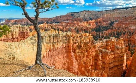 Bryce Canyon - Utah - stock photo