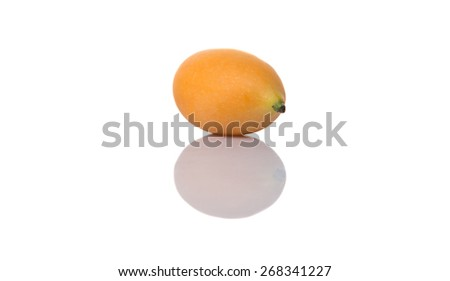 Buah Kundang is commonly known in English as the marian plum, gandaria, and plum mango is a tropical fruit tree native to Malaysia and Southeast Asia
