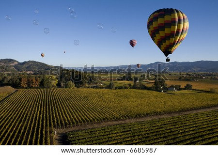 Bubbles over Vineyards