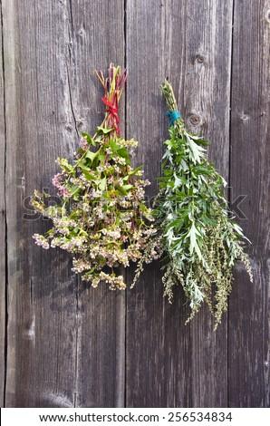 buckwheat and medical plant mugwort Artemisia vulgaris bunch on old wooden farm wall - stock photo