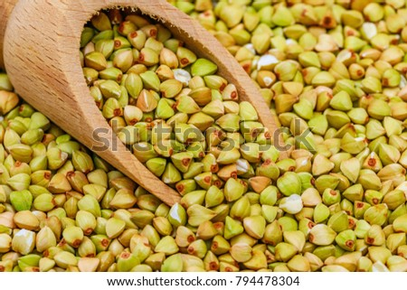 Buckwheat natural fresh green unroasted groats  in wooden spoon, close up