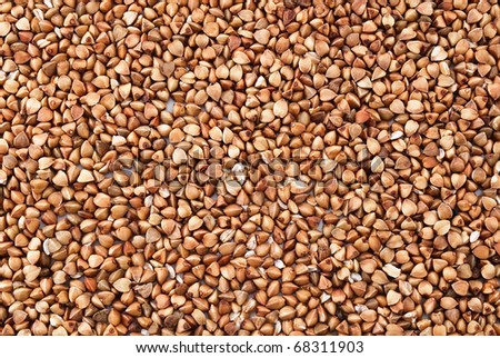 Buckwheat texture for background