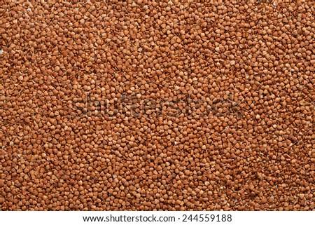 Buckwheat texture / high-quality photograph of premium buckwheat groats  - stock photo