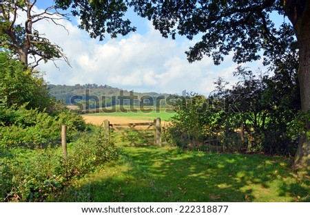 Bucolic England - Cranleigh Farm  Near Guilford in Surrey on a warm sunny summer day.