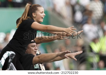 BUDAPEST, HUNGARY - AUGUST 24, 2014: Supporters of FTC celebrate the win of their team during Ferencvaros vs. Nyiregyhaza OTP Bank League football match at Groupama Arena. - stock photo