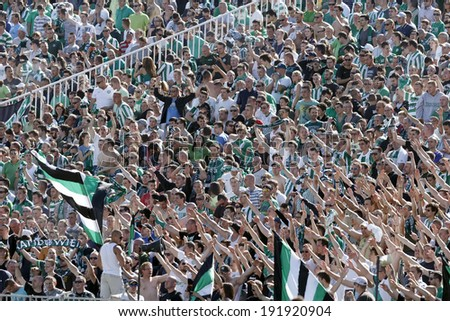 BUDAPEST, HUNGARY - MAY 10, 2014: Supporters of Ferencvaros celebrate the winning goal during Ferencvaros vs. Diosgyori VTK OTP Bank League football match at Puskas Stadium. - stock photo