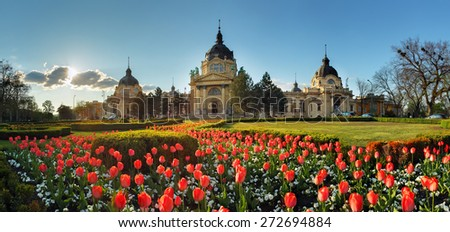 Budapest - spring panorama with flower, Szechenyi Spa, Hungary - stock photo