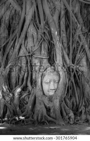 Buddha Face, Wat Mahathat, Ayutthaya,Wat Mahathat Yuwarajarangsarit Rajaworamahavihara is a Buddhist temple in Bangkok, Thailand. It is one of the 6 royal temples of the highest class