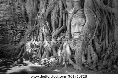Buddha Face, Wat Mahathat, Ayutthaya,Wat Mahathat Yuwarajarangsarit Rajaworamahavihara is a Buddhist temple in Bangkok, Thailand. It is one of the 6 royal temples of the highest class - stock photo