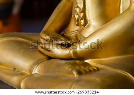 Buddha hands in mediation   closeup - stock photo