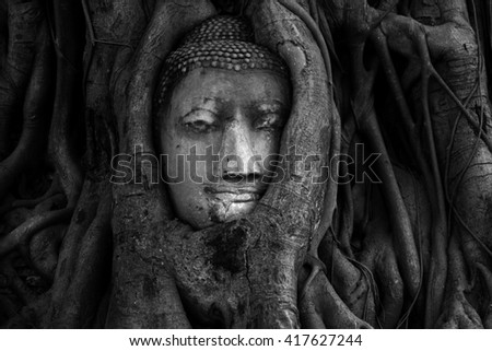 Buddha Head statue hidden in the tree roots. Ancient sandstone sculpture at Wat Mahathat. Ayutthaya, Thailand.Black and White. - stock photo