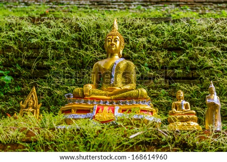 Buddha in temple, Thailand - stock photo