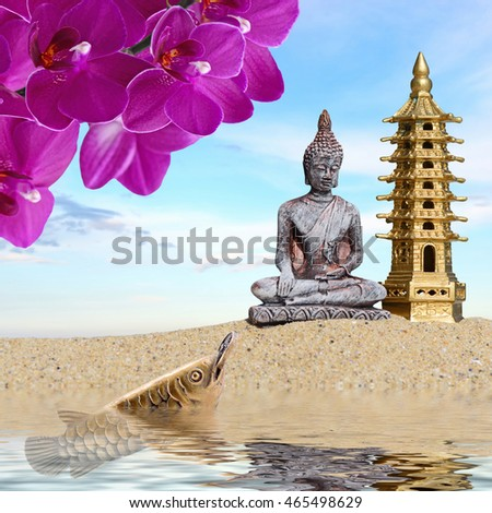 Buddhaorchid Flowersarowana Coin Reflected Water Symbol Wealth Stock