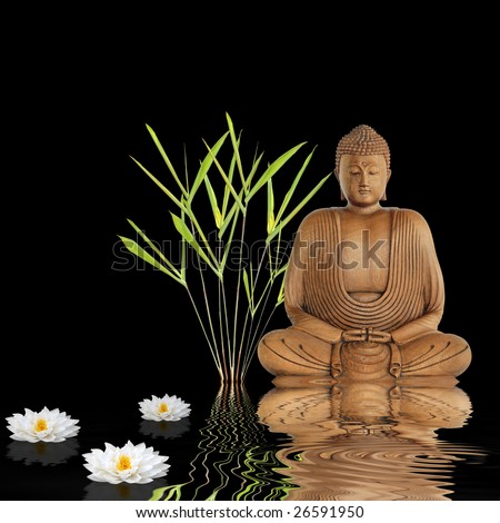 Buddha sitting in an abstract zen garden with bamboo leaf grass and white japanese lotus lily flowers with reflection in rippled water, over black background. - stock photo
