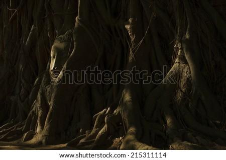 buddha statue in shadow - stock photo
