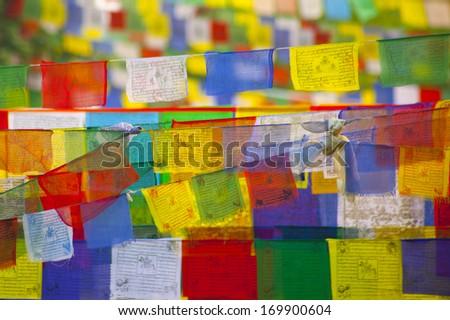 Buddhist praying flags in Lumbibi, Nepal - stock photo