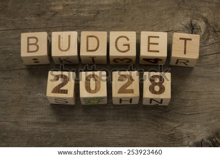 Budget for 2028 wooden, blocks on a wooden background - stock photo