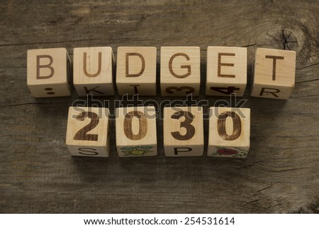 Budget for 2030 wooden, blocks on a wooden background - stock photo