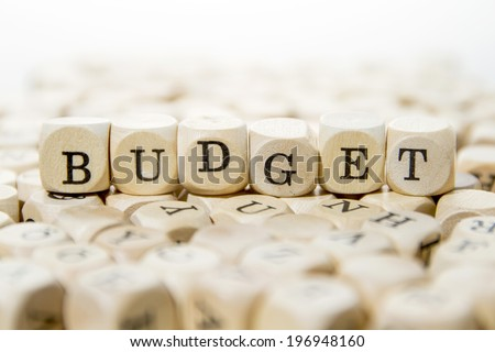Budget word - stock photo