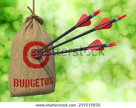 Budgeting - Three Arrows Hit in Red Target on a Hanging Sack on Green Bokeh Background. - stock photo