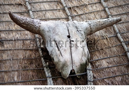 Buffalo skull above the african hut entrance - stock photo