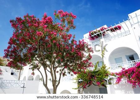 Building of hotel in traditional Greek style, Santorini island, Greece - stock photo